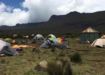 Kilimanjaro safaris zanzibar.